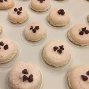 Cookie Dough Macaron Shells